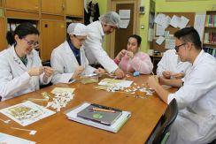 El equipo docento trabaja en equipo con el alumnado.