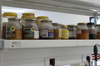 Muestras de mieles de la zona para analizar.