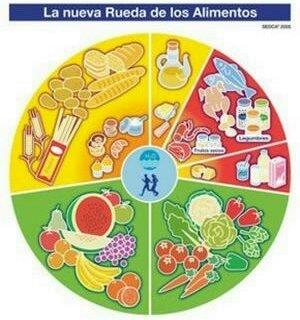 Rueda de los alimentos, 2007